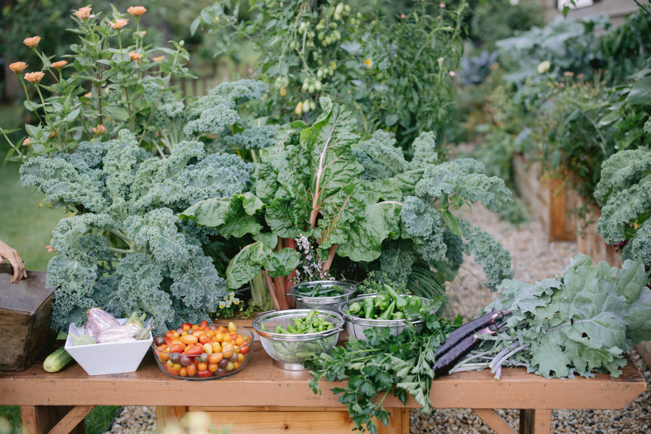 Kitchen garden harvest in Kitchen Garden Revival book