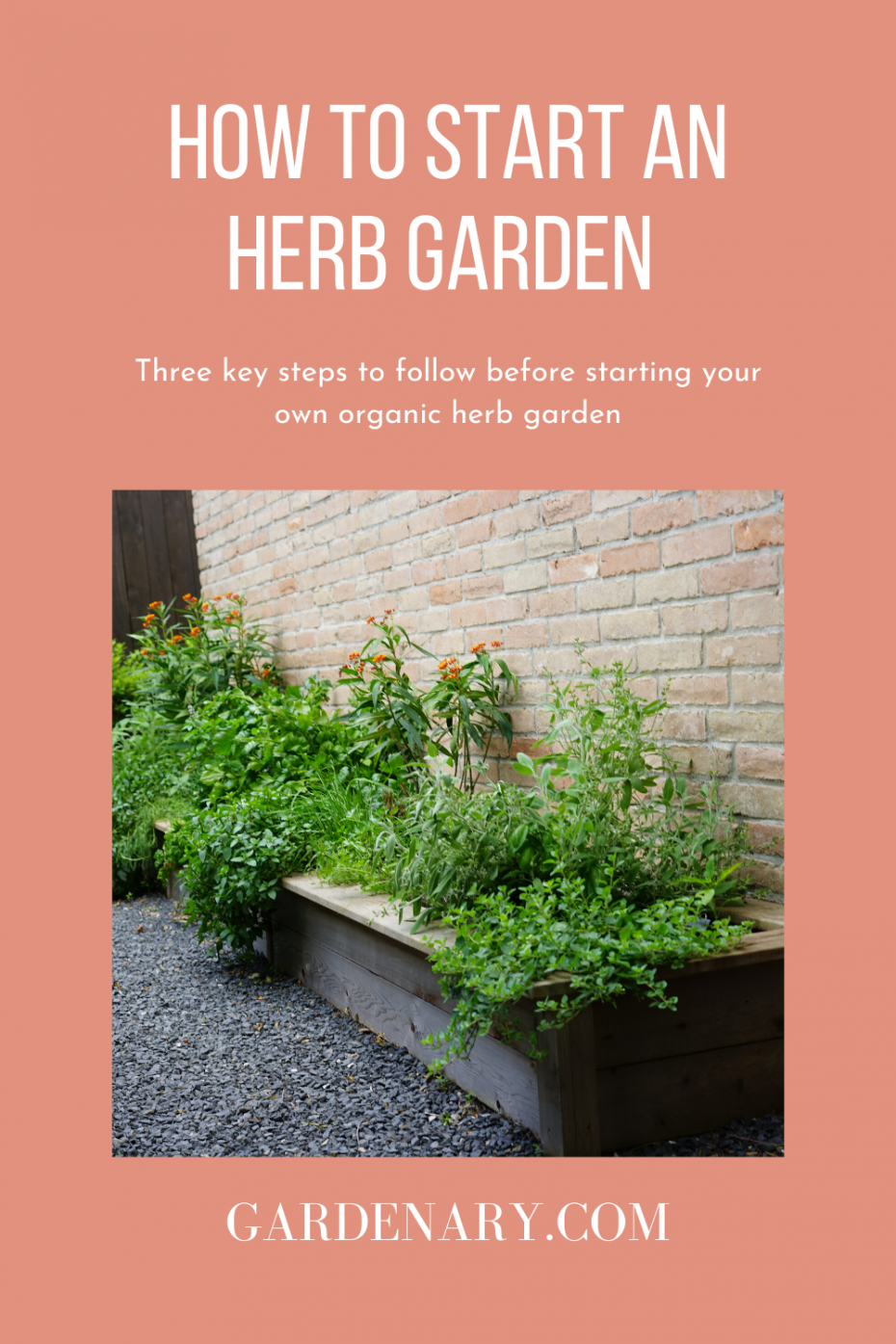 how to start an herb garden by Nicole Burke, author of Kitchen Garden Revival