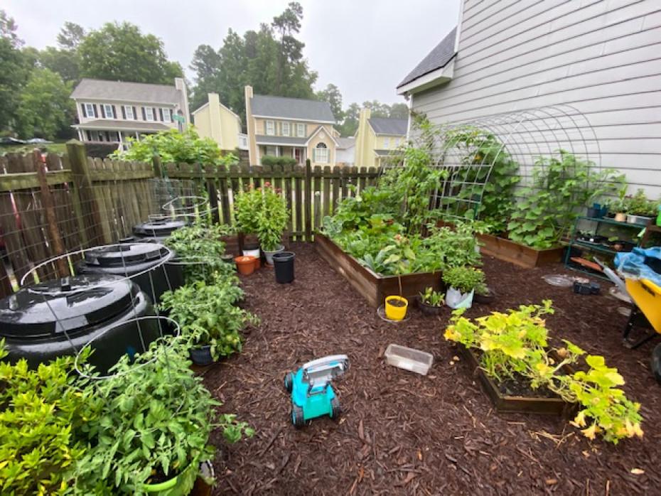 Carolina Garden Coaching
