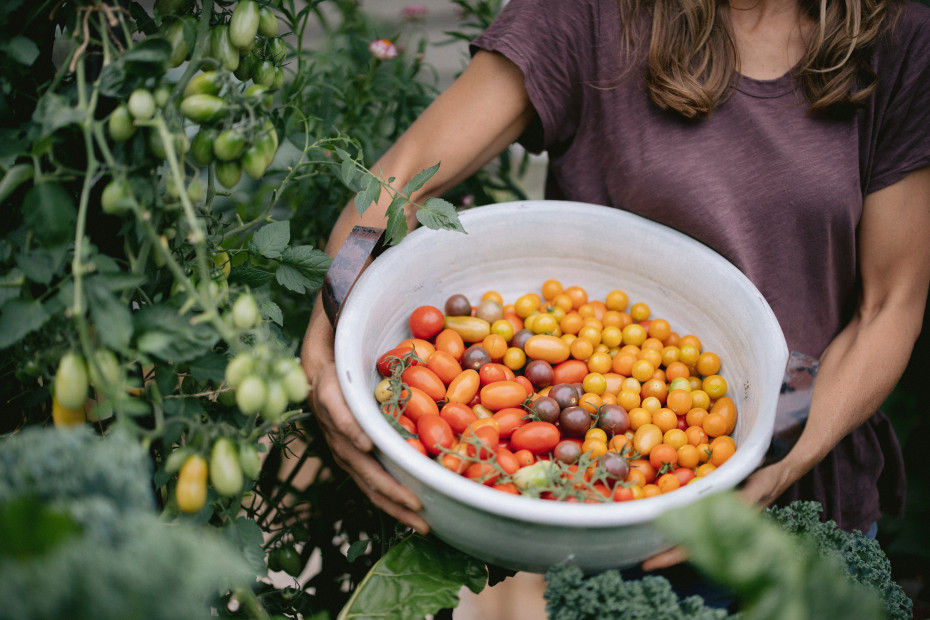 The Truth About Tomatoes on Grow Your Self Podcast with Nicole Burke