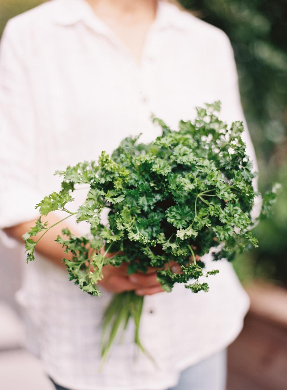 Best Way to start an herb garden, parsley held by Nicole Burke, Author of Kitchen Garden Revival