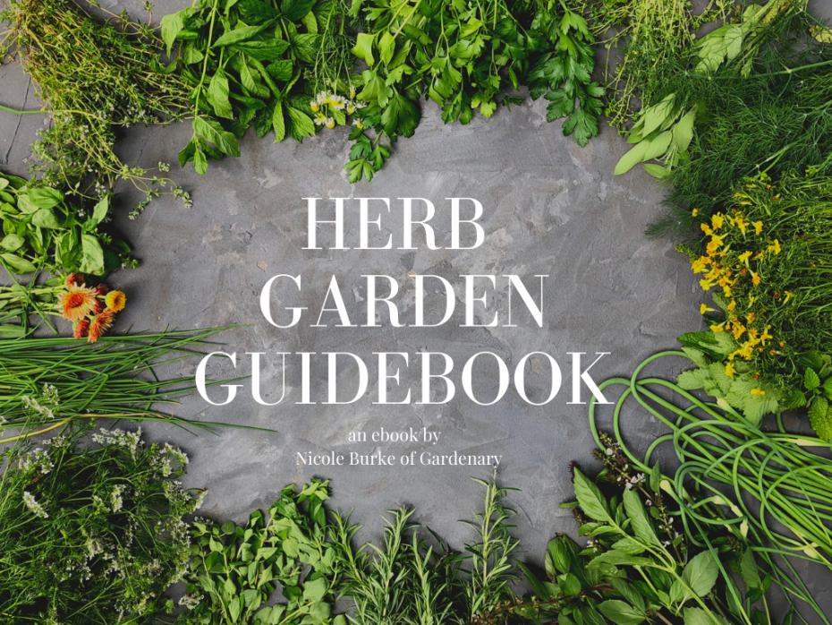 Herb Garden Guidebook