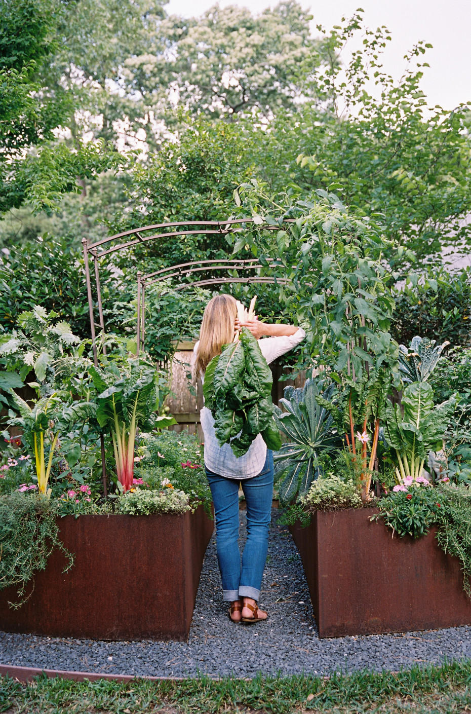 Arch trellis ideas for your kitchen garden pictured is a brown metal arch from Nicole Burke, author of Kitchen Garden Revival