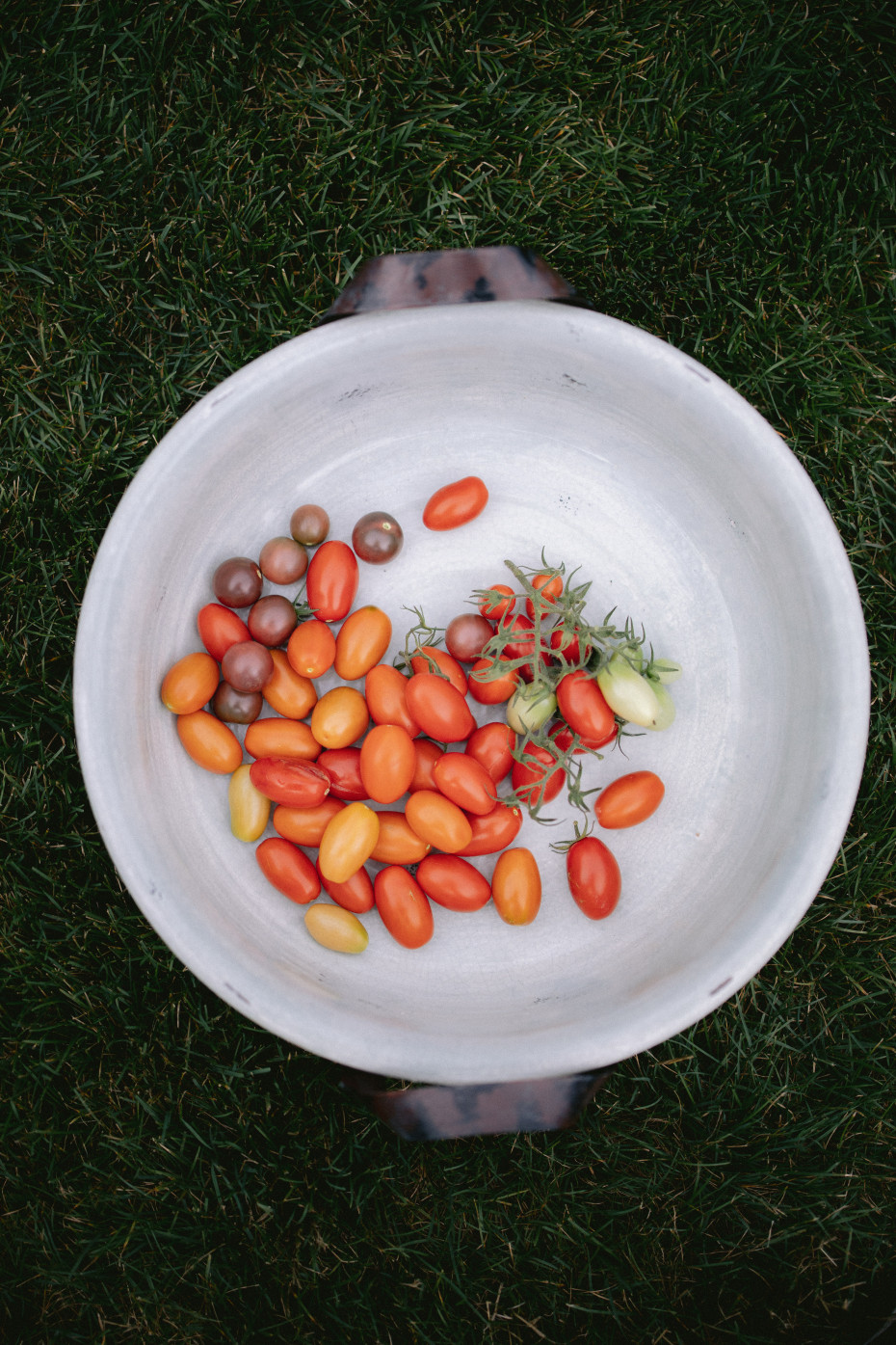Truth About Tomatoes on the Grow Your Self Podcast by Nicole Burke