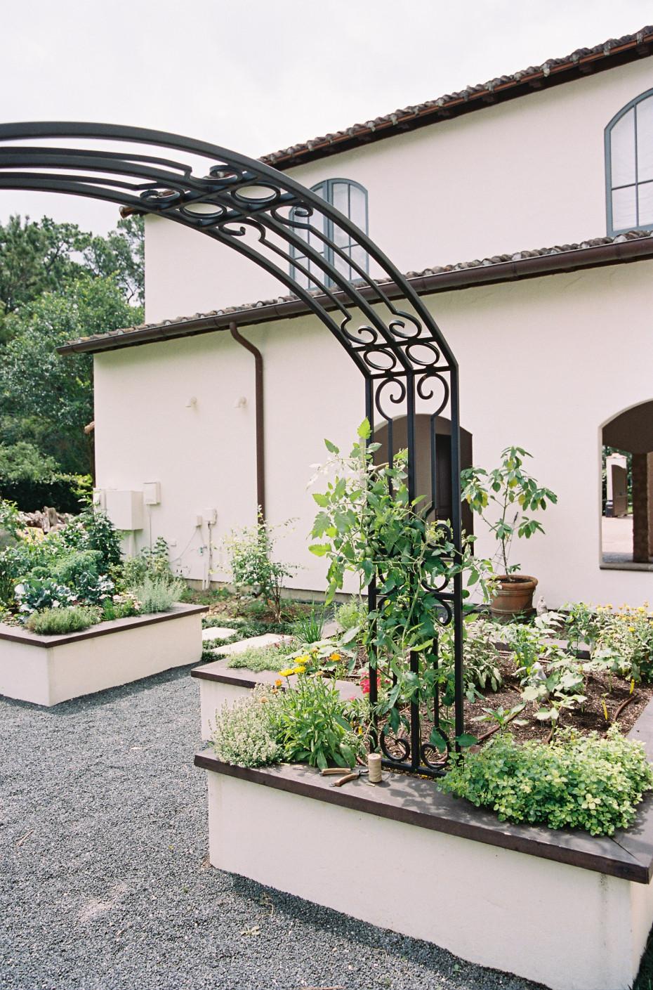 Arch Garden Trellis Ideas by Nicole Burke of Gardenary
